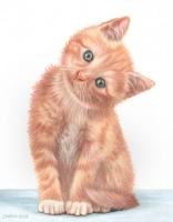 Kitten_CPClassics