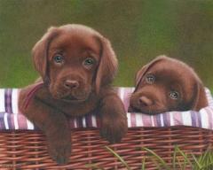 Puppies_CPClassics