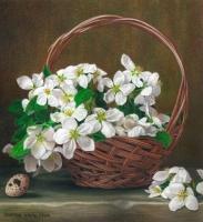 Apple-Blossoms-CPFloralsAK