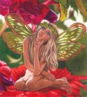 Ana-the-Daisy-Fairy-FairiesBk