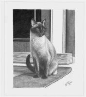 Graphite-Art-002-wp