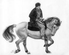 Ron-and-Buck-wphorses